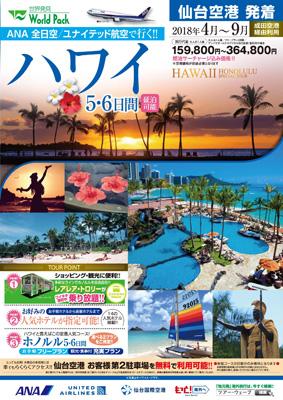 ハワイ表面ANA8A